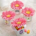 kate-aspen-favour-box-daisy-delight-gerbera-daisy-set-of-24-hot-pink